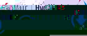 altair_hyperworks_12_guncelleme